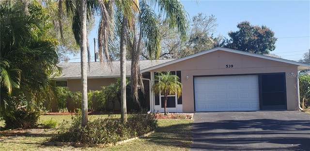 539 Bellaire Drive, Venice, FL 34293 (MLS #A4492550) :: Zarghami Group