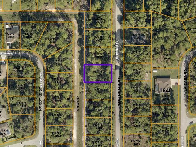 Nagengast Street, North Port, FL 34288 (MLS #A4492598) :: Visionary Properties Inc