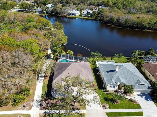 6645 Meandering Way, Lakewood Ranch, FL 34202 (MLS #A4492717) :: Zarghami Group