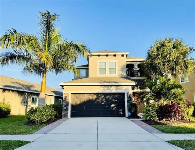 6527 Salt Creek Avenue, Apollo Beach, FL 33572 (MLS #A4492805) :: Griffin Group