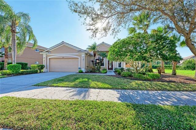 8736 Stone Harbour Loop, Bradenton, FL 34212 (MLS #A4492869) :: Burwell Real Estate
