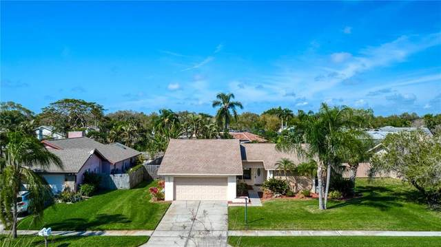 6552 Waterford Circle, Sarasota, FL 34238 (MLS #A4492965) :: EXIT King Realty