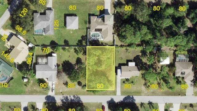 10120 Rafferty Avenue, Englewood, FL 34224 (MLS #A4493127) :: EXIT King Realty