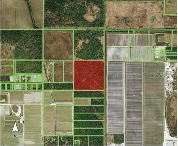 2400 State Road 31, Punta Gorda, FL 33982 (MLS #A4493231) :: Positive Edge Real Estate