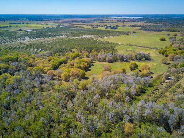 747 Roy Moore Road, Ona, FL 33865 (MLS #A4493237) :: Griffin Group
