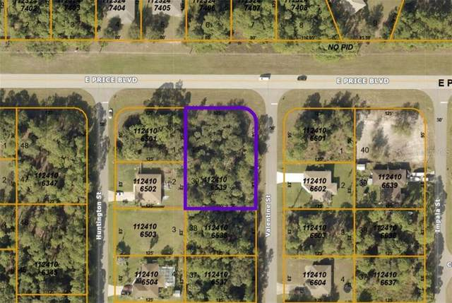 Valentine Street, North Port, FL 34288 (MLS #A4493464) :: Positive Edge Real Estate