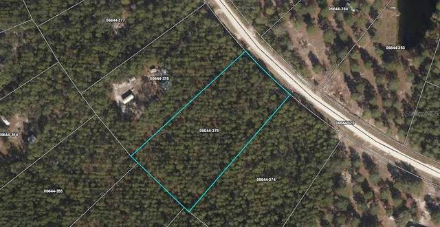 18690 Whitetail Drive W, Perry, FL 32348 (MLS #A4493508) :: Bustamante Real Estate