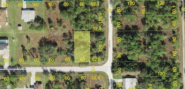 28066 Bandit Drive, Punta Gorda, FL 33955 (MLS #A4494573) :: Vacasa Real Estate