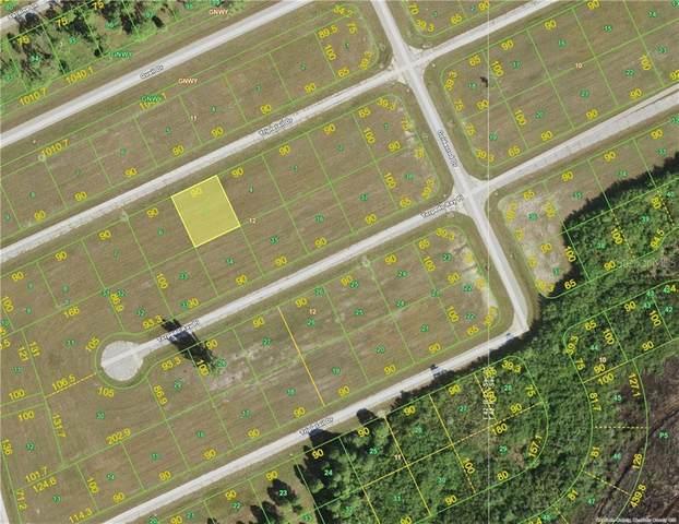 12242 Tripletail Drive, Placida, FL 33946 (MLS #A4495046) :: The Lersch Group