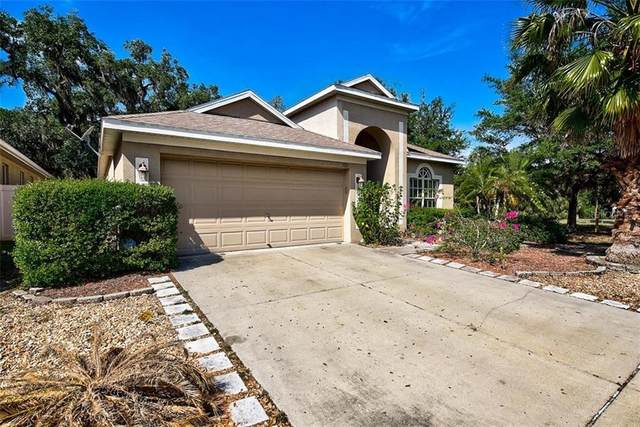 5331 Clover Mist Drive, Apollo Beach, FL 33572 (MLS #A4496200) :: Frankenstein Home Team