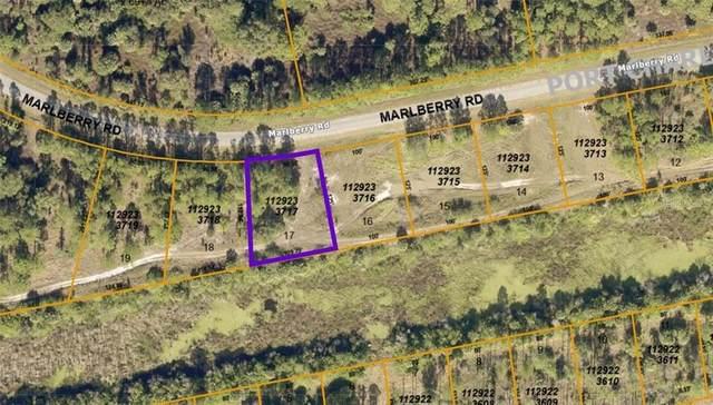 1129233717 Marlberry Road, North Port, FL 34288 (MLS #A4496211) :: Vacasa Real Estate