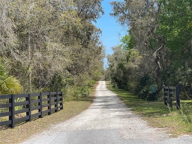 11573 E Steamboat Drive, Floral City, FL 34436 (MLS #A4496265) :: Lockhart & Walseth Team, Realtors