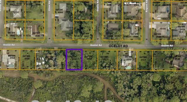 0473060160 Ocelot Road, Venice, FL 34293 (MLS #A4497219) :: The Light Team