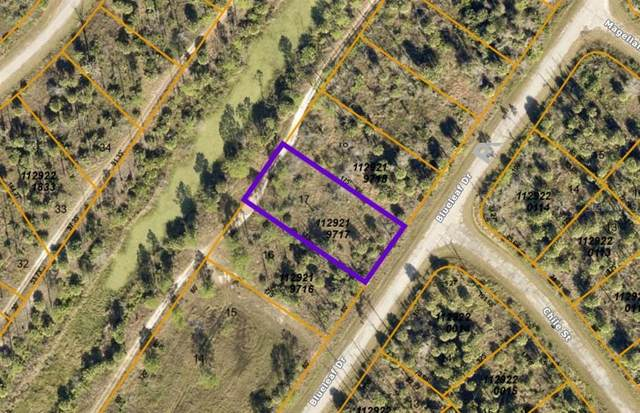 Blueleaf Drive, North Port, FL 34288 (MLS #A4497228) :: McConnell and Associates