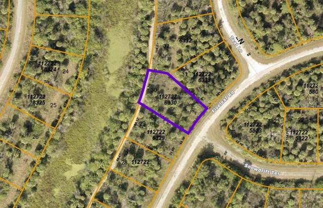 Fiveleaf Road, North Port, FL 34288 (MLS #A4497263) :: The Kardosh Team