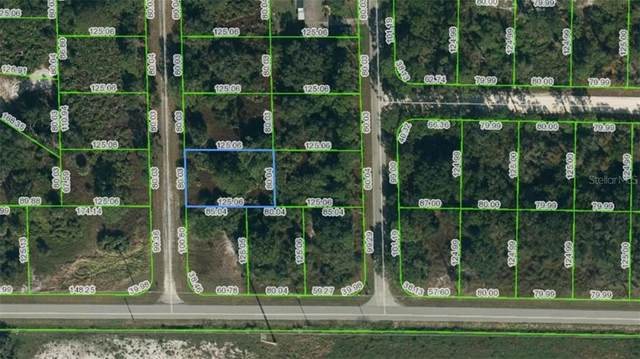 354 Frederick Street NW, Lake Placid, FL 33852 (MLS #A4497780) :: Bob Paulson with Vylla Home