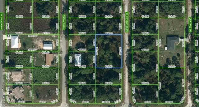 111 Woodmere Avenue NE, Lake Placid, FL 33852 (MLS #A4497781) :: The Hesse Team
