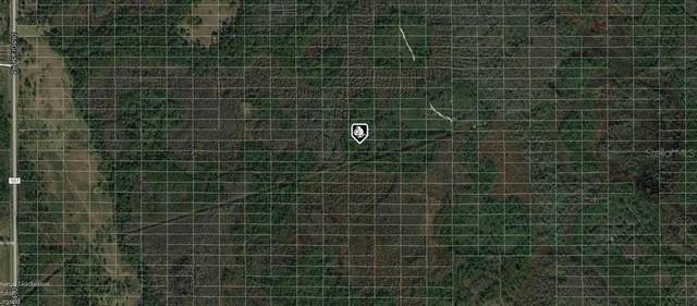 Old Grade Road, Polk City, FL 33868 (MLS #A4497825) :: Bridge Realty Group