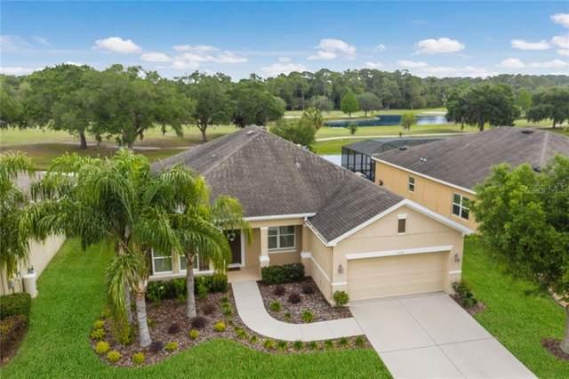 9108 Raes Creek Place, Palmetto, FL 34221 (MLS #A4497911) :: Zarghami Group