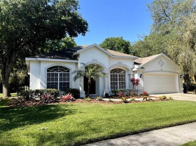 5027 Southampton Circle, Tampa, FL 33647 (MLS #A4497962) :: The Nathan Bangs Group