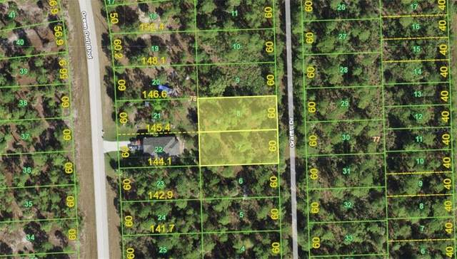 12313 & 12319 Graffiti Drive, Punta Gorda, FL 33955 (MLS #A4497971) :: McConnell and Associates