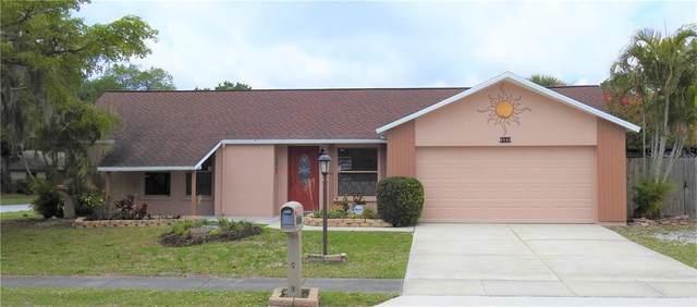 6540 Mauna Loa Boulevard, Sarasota, FL 34241 (MLS #A4498029) :: Florida Real Estate Sellers at Keller Williams Realty