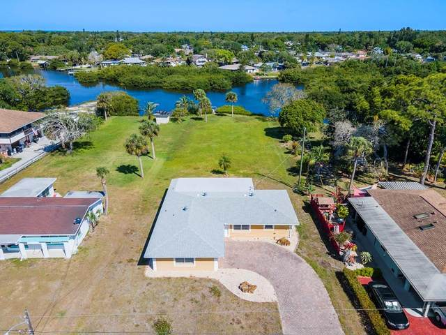 1180 Lemon Bay Drive, Venice, FL 34293 (MLS #A4498095) :: The Kardosh Team