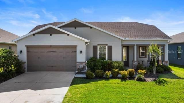 1111 116TH Street E, Bradenton, FL 34212 (MLS #A4498126) :: Everlane Realty