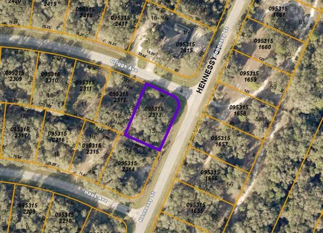 Hennessy Street, North Port, FL 34291 (MLS #A4498255) :: Vacasa Real Estate