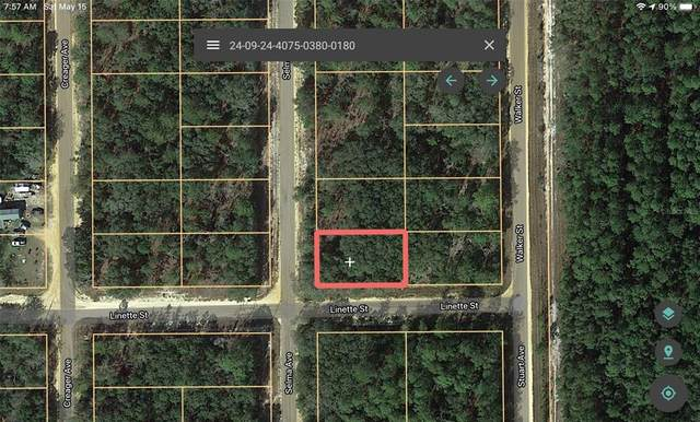 804 Selma Avenue, Interlachen, FL 32148 (MLS #A4498407) :: Your Florida House Team