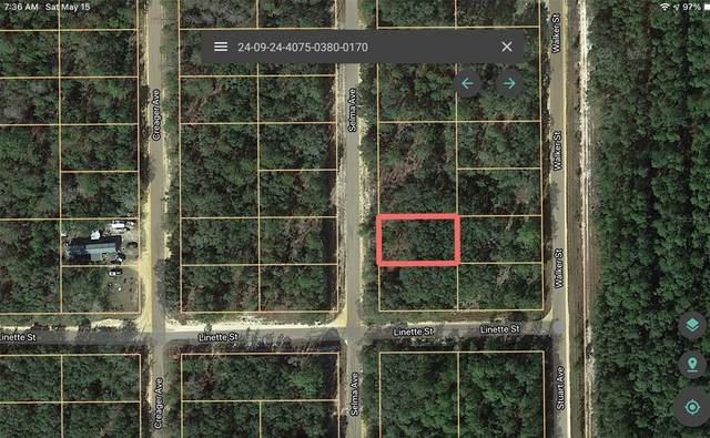 802 Selma Avenue, Interlachen, FL 32148 (MLS #A4498409) :: Your Florida House Team