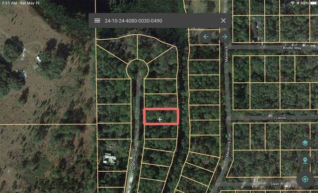 218 Longhorn Trail, Interlachen, FL 32148 (MLS #A4498411) :: Your Florida House Team