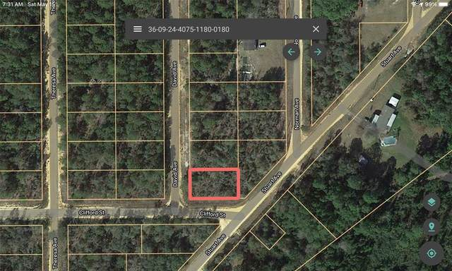 100 David, Interlachen, FL 32148 (MLS #A4498417) :: Your Florida House Team