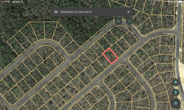 0000 Airmont Drive, Chipley, FL 32428 (MLS #A4498419) :: RE/MAX Elite Realty