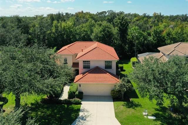 9904 Discovery Terrace, Bradenton, FL 34212 (MLS #A4498423) :: Everlane Realty