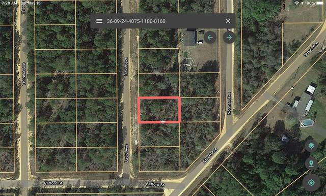 104 David Avenue, Interlachen, FL 32148 (MLS #A4498427) :: Your Florida House Team