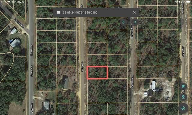 Kitty, Interlachen, FL 32148 (MLS #A4498428) :: Dalton Wade Real Estate Group
