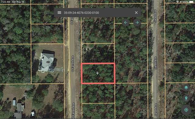 416 O'farrell Avenue, Interlachen, FL 32148 (MLS #A4498429) :: Your Florida House Team