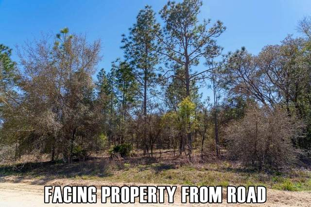 0000 26TH Avenue, Morriston, FL 32668 (MLS #A4498472) :: Armel Real Estate