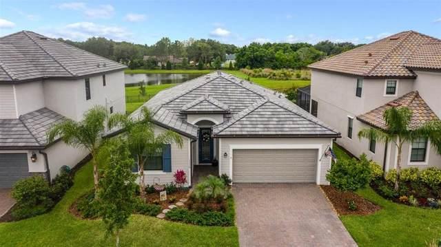 11110 Copperlefe Drive, Bradenton, FL 34212 (MLS #A4498585) :: Expert Advisors Group