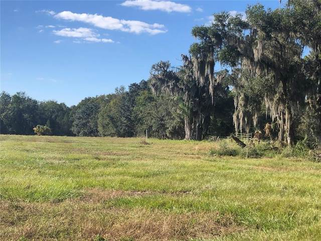 Bunker Hill Rd, Duette, FL 34219 (MLS #A4498591) :: Premium Properties Real Estate Services