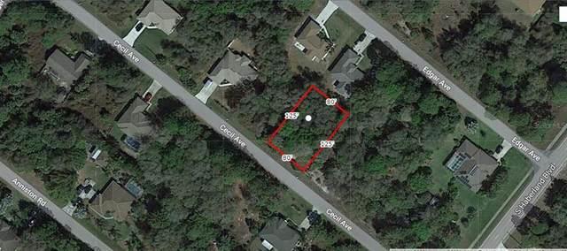 Cecil Avenue, North Port, FL 34288 (MLS #A4498598) :: Armel Real Estate