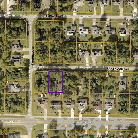 Cranbrook Avenue, North Port, FL 34286 (MLS #A4498640) :: The Heidi Schrock Team