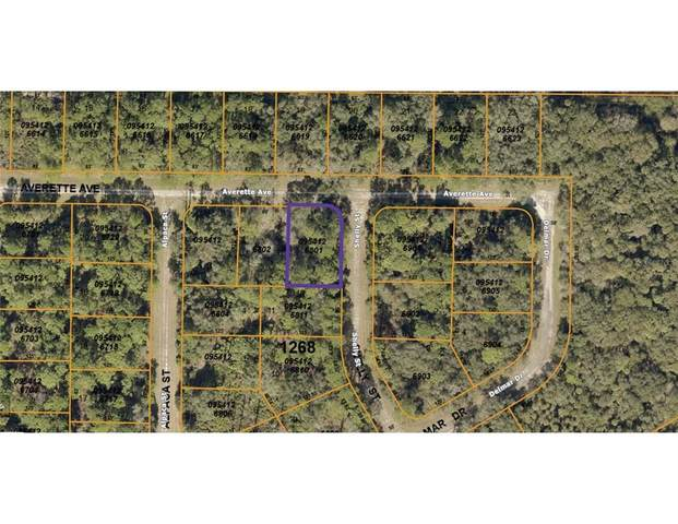 Averette Avenue, North Port, FL 34291 (MLS #A4498801) :: Rabell Realty Group