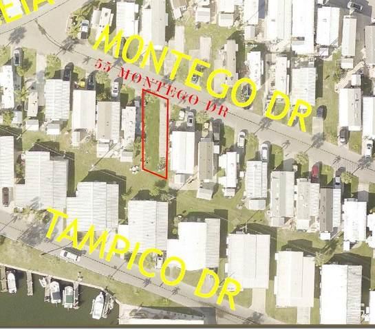 55 Montego Drive, Palmetto, FL 34221 (MLS #A4499005) :: Cartwright Realty