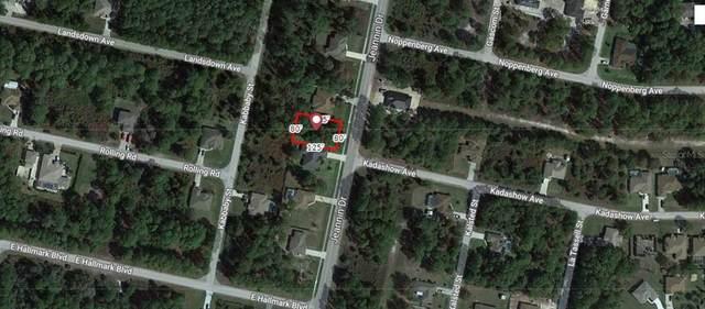 Jeannin Drive, North Port, FL 34288 (MLS #A4499060) :: The Lersch Group