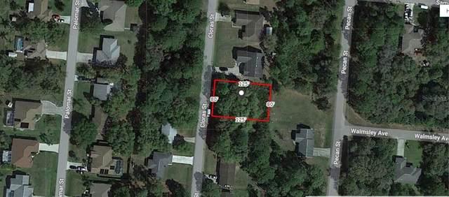 Cloras Street, North Port, FL 34287 (MLS #A4499114) :: Frankenstein Home Team