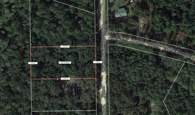 125 Phillips Road, Florahome, FL 32140 (MLS #A4499340) :: Bustamante Real Estate