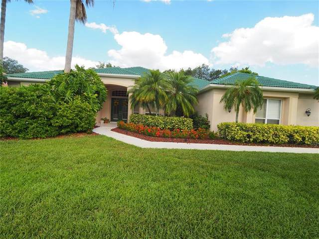 2908 Little Country Road, Parrish, FL 34219 (MLS #A4499469) :: Team Pepka