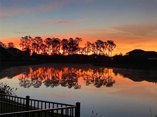 11823 Cross Vine Drive, Riverview, FL 33579 (MLS #A4499510) :: Team Borham at Keller Williams Realty